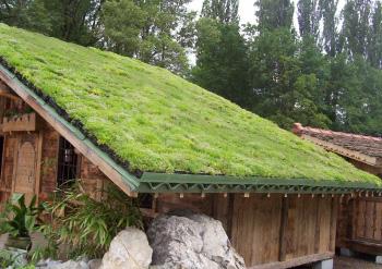 sm devis toiture vegetaliser